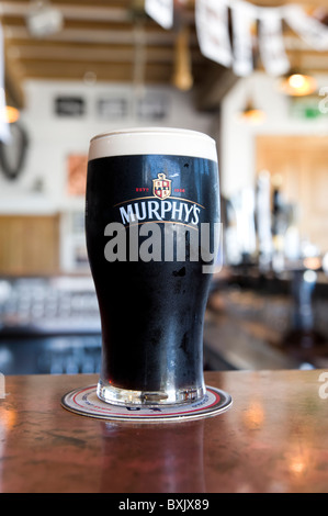 Pint of Murphy's stout beer, Ireland - Stock Photo
