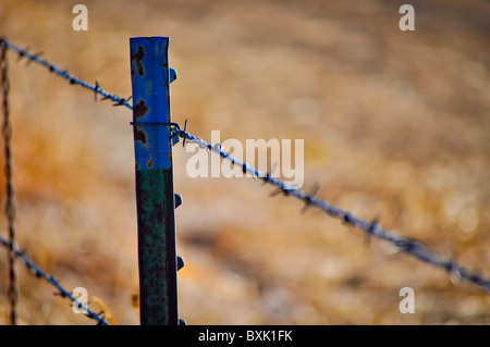 barbed wire fence post - Stock Photo