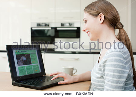 Young woman looking at pet insurance on laptop - Stock Photo