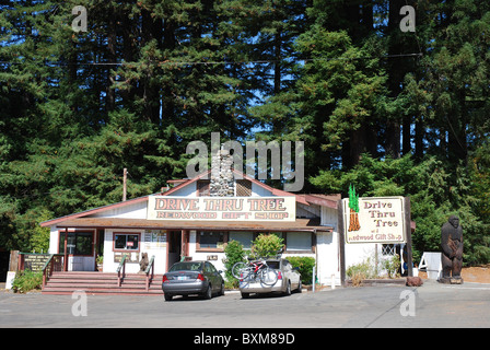 Drive Thru Tree Gift shop in Redwoods National Park, California ...