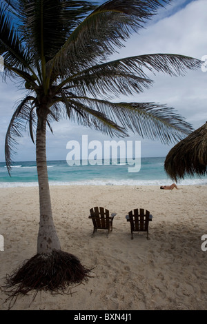 Two empty chairs under a palm tree in a beach of the Mayan Riviera off the Caribbean Sea in Tulum, Mexico's Yucatan - Stock Photo
