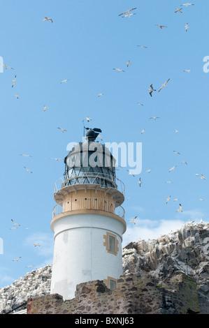Bass Rock Scotland - Stock Photo