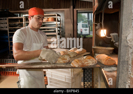 Artisan sourdough baker removing freshly baked bread from a woodfired oven - Stock Photo