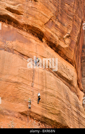 Rock Climbers in Zion Canyon, Zion National Park, Utah - Stock Photo