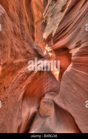 HDR image of swirling, eroded forms In the narrow, red sandstone confines of Peekaboo Canyon - Stock Photo