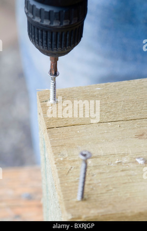 Drilling screws into wood with electric screwdriver, close-up - Stock Photo