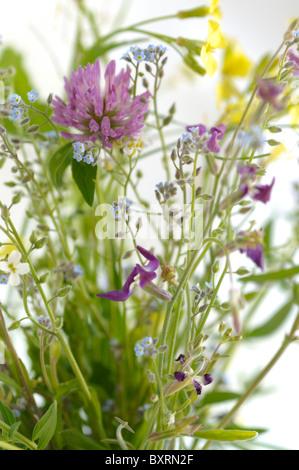 Field flowers freshly picked in summer - Stock Photo