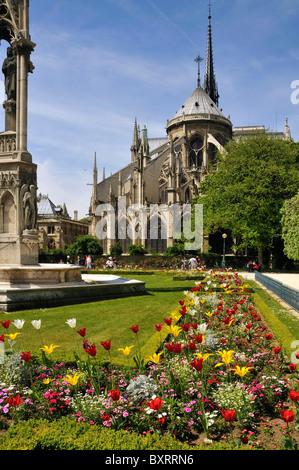 Notre Dame Cathedral, Île de la Cité, Paris, Île-de-France, France, Europe - Stock Photo