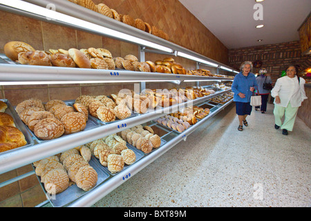 Conchas or Mexican sweet bread in a bakery in Coyoacan, Mexico City, Mexico - Stock Photo
