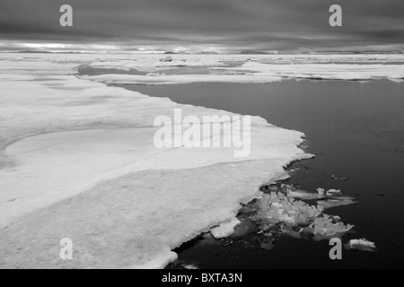 Norway, Svalbard, Nordaustlandet , Sea ice in fog near Scoresby Island on summer evening - Stock Photo