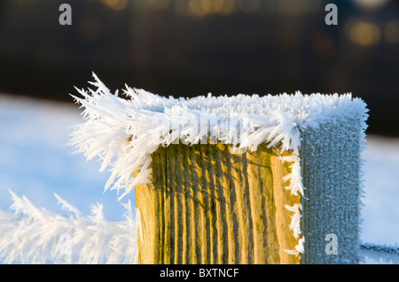 Frost crystals on a fence post, near the village of Scarfskerry, Caithness, Scotland, UK - Stock Photo