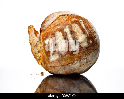 round loaf of bread dusted with the year 2010 - Stock Photo