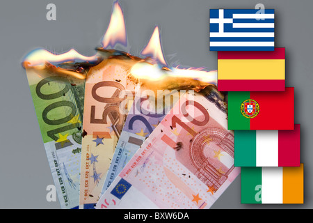 burning bank notes currency crisis of the EUR awaited collapse of the euro symbol picture its death flag pigs piigs - Stock Photo