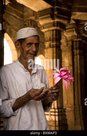 A Muslim man holds a pink lotus flower at the Bai Harir Mosque at Ahmedabad, Gujarat, India. - Stock Photo
