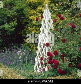 wooden garden obelisk stock photo royalty free image. Black Bedroom Furniture Sets. Home Design Ideas