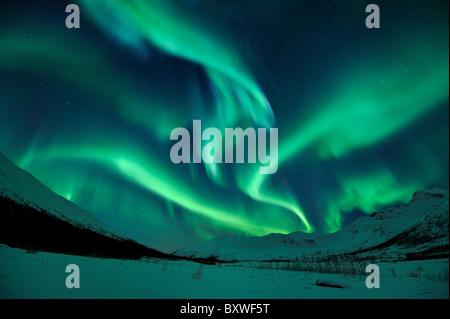 Northern Lights (Aurora Borealis) in North Norway - Stock Photo