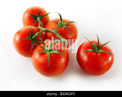 Jubilee vine tomatoes - Stock Photo