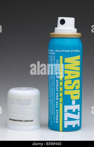 Can of Wasp-eze spray for all types of stings - Stock Photo