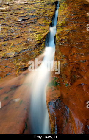 A small stream carves out a path in stone near the subway in Zion national Park - Stock Photo