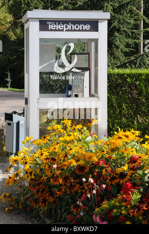 Telephone kiosk cabin box for France Telecom in Chablis town Burgundy France with flowers in street garden - Stock Photo