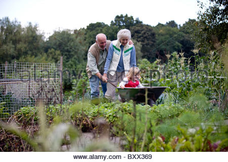 Grandparents pushing their granddaughter in a wheelbarrow on an allotment - Stock Photo