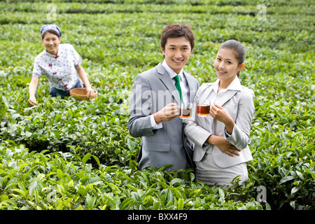 Two Young Businesspeople in Tea Field with Young Woman Picking Tea - Stock Photo