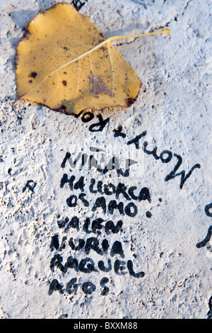 love graffiti written painted on the milvio bridge Tiber river wall marble Rome Italy pen autumn name names italian - Stock Photo