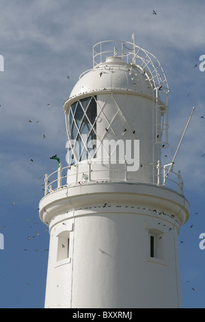 Portland Bill Lighthouse light with migrating House Martins flying around the light. - Stock Photo