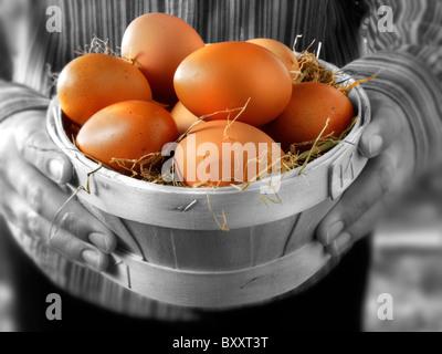 Fresh free range chicken eggs in a wooden basket - Stock Photo
