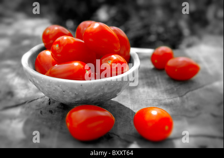 Fresh picked plum tomatoes - Stock Photo