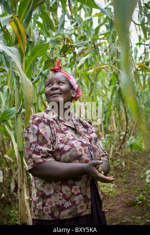 Martha Namaemba, (45), in her corn field - Webuye District, Western Kenya. - Stock Photo