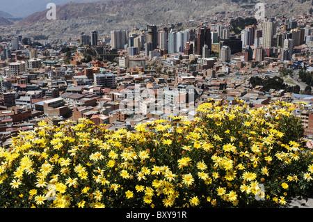 a view over la Paz in Bolivia - Stock Photo