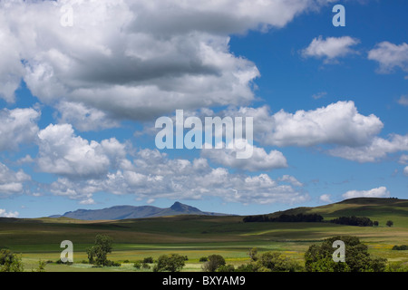 Meadow and distant mountains under a big sky in the Fort Nottingham region of the Midlands, KwaZulu Natal, South - Stock Photo
