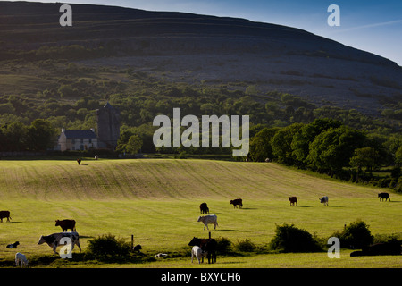 Homestead in shadow of The Burren karst landscape and Newtown Castle, Ballyvaughan, County Clare, West of Ireland - Stock Photo