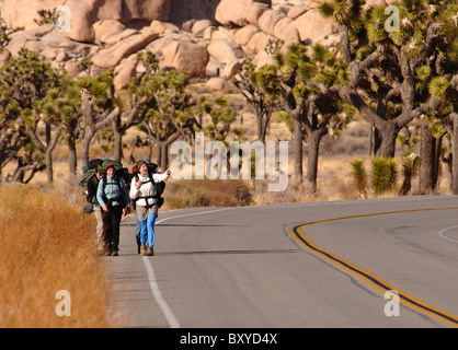 Backpackers on Highway through Joshua Tree Park, Yucca brevifolia, Mojave Desert, California, USA - Stock Photo