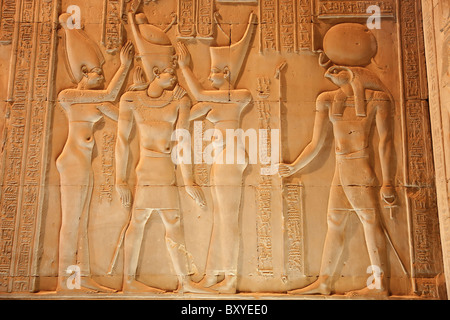 Kom Ombo Temple at night, Egypt - elegant frieze carving - Stock Photo
