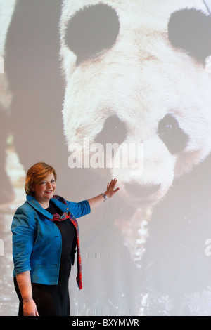 Scotland - 10 January 2011.  Culture Minister Fiona Hyslop welcomes two giant pandas to Edinburgh Zoo - Stock Photo
