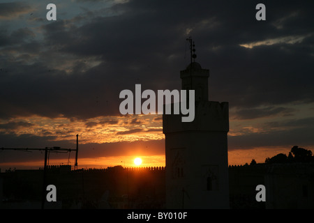 a silhouette of the city of fez in morocco with millions of swallows flying in the evening sunset with a mosque - Stock Photo