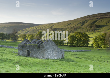 Isolated old stone field barn ruin, scenic hillside valley slope, farmland & sunlit upland hills - Arncliffe, Littondale, Yorkshire Dales, England, UK