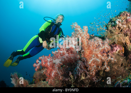 Scuba Diving at Bali, Alam Batu, Bali, Indonesia - Stock Photo