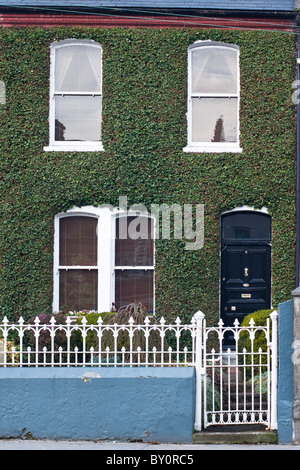 An ivy covered house in Ireland's traditional green, in Limerick, Republic of Ireland. - Stock Photo