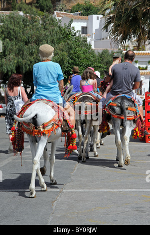 Burro taxi donkey rides train mijas costa del sol for Burro blanco