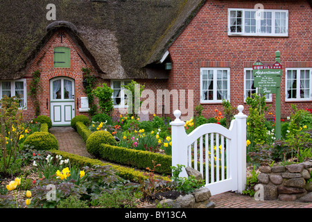 Colourful flowers in garden of Frisian traditional house with straw-thatched roof at Sankt Peter-Ording, North Frisia, - Stock Photo