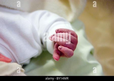 Wrinkled human baby hand shortly after being born. - Stock Photo