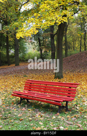 DEU, Deutschland, 20101007, - forest with park bench  Gerhard Leber - Stock Photo
