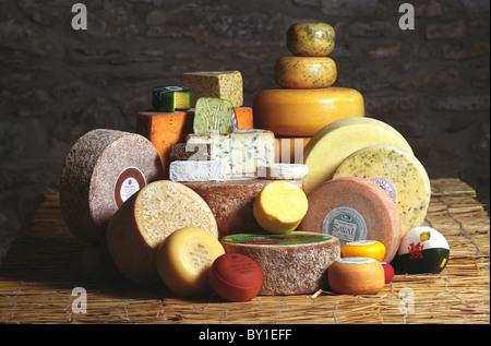 Teifi Cheese. - Stock Photo