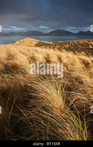 Dune grass, Luskentyre beach, Isle of Harris, Western Isles, Scotland - Stock Photo