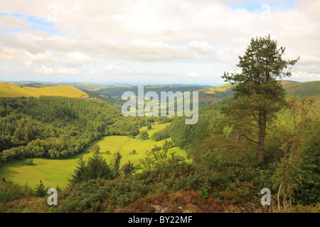 Valley of the Nant yr Arian towards Goginan and Aberystwyth. Ceredigion, Wales. - Stock Photo
