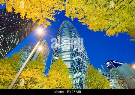 Asia, Japan, Tokyo, Shinjuku, Tokyo Mode Gakuen Cocoon Tower, Design School building, yellow ginkgo leaves