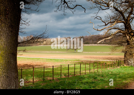 Wiltshire countryside, near Bowood, Wiltshire - Stock Photo